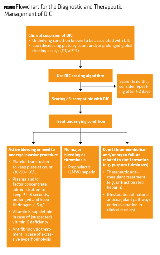 Flowchart for the Diagnostic and Therapeutic Management of DIC